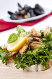 Cooked mussels with lemon Royalty Free Stock Photo
