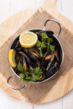 Cooked mussels with lemon slices and parsley in a metal bowl Royalty Free Stock Photos