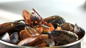 Cooked mussels macro. Clams with vegetables and rosemary stock video footage