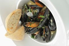 Cooked mussels meal Stock Photo