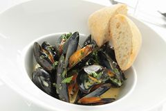 Cooked mussels meal Royalty Free Stock Photo