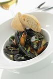 Cooked mussels meal Royalty Free Stock Photography