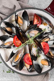 Cooked mussels in a pan served on a napkin garnished with tomatoes and thyme. Steamed mussels in white wine sauce. Seafood mussels on pan with cream sauce Royalty Free Stock Image
