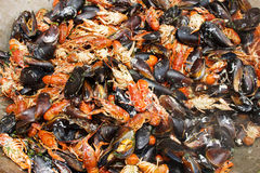 Cooked mussels on the plate Royalty Free Stock Images