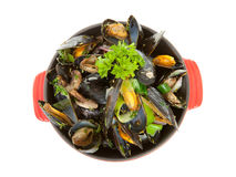 Cooked mussels in red casserole Royalty Free Stock Photography