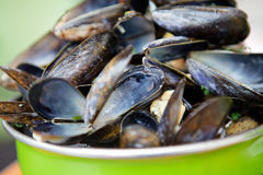 Cooked Mussels Royalty Free Stock Photo