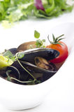 Cooked mussels with tomato Royalty Free Stock Photos