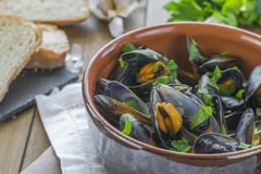 Cooked mussels Royalty Free Stock Images