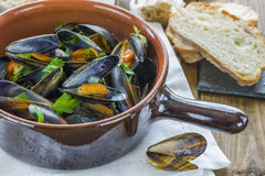 Cooked mussels Stock Photos