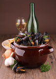 Cooked mussels with wine sauce Royalty Free Stock Image