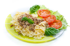 Cooked noodles with boiled meat Royalty Free Stock Photography