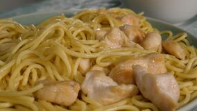 Cooked noodles with chicken meat in plate