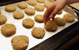 Cooked oatmeal cookies Stock Images