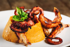 Cooked octopus on plate Royalty Free Stock Photos
