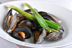 Cooked and opened mussel Stock Photography