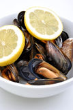 Cooked and opened mussel ready to eat Stock Photos