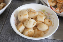 Cooked Pan Seared Scallops Closeup Royalty Free Stock Images