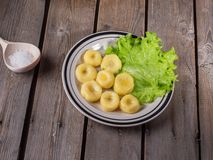 Cooked potato gnocchi, leaves of fresh leaf lettuce on a striped bright ceramic plate on an old plank table. Near a wooden spoon with coarse salt royalty free stock photography