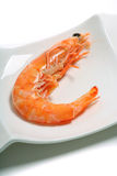 Cooked prawn on a plate Stock Photos