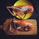 Cooked prawn Royalty Free Stock Photos