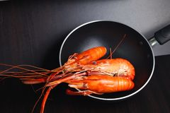 Cooked prawn scene. Stock Images