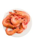 Cooked prawns Stock Image