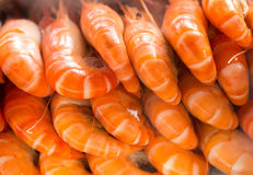 Cooked prawns Royalty Free Stock Photos