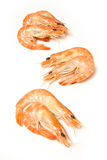 Cooked prawns Royalty Free Stock Photography