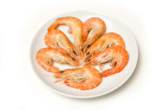 Cooked prawns on plate Stock Photo