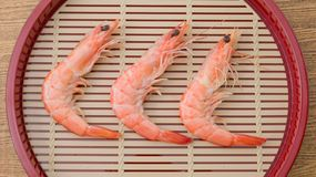 Cooked Prawns or Tiger Shrimps in A Tray Stock Photos