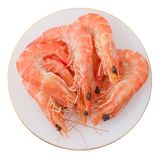Cooked Prawns or Tiger Shrimps in White Plate Stock Photos