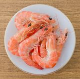 Cooked Prawns or Tiger Shrimps in White Plate Royalty Free Stock Images