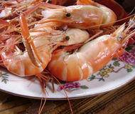 Prawns seafood Stock Images