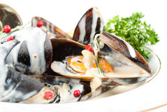 Cooked and prepared mussels ready to be eaten. Stock Photo