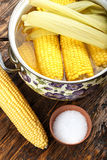 Cooked and raw corncobs Stock Photography