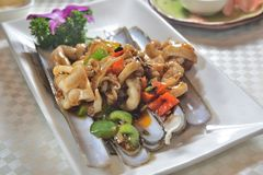 Cooked Razor clams. Fried cooked razor clams seafood dish royalty free stock images