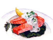 Cooked red fish watercolor stock illustration