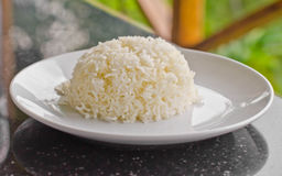 Cooked rice. Stock Images