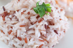 Cooked rice Royalty Free Stock Image