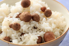 Cooked rice with propagule of Japanese yam Royalty Free Stock Image