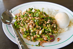 Cooked rice with spicy minced meat salad Stock Photo