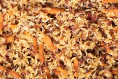 Cooked Rice Texture Closeup Royalty Free Stock Image