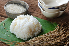 Cooked rice, uncooked rice and paddy rice on wooden table Stock Photo