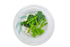 Cooked rice and vegetable Royalty Free Stock Photography