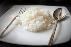 Cooked rice on white dish Stock Photos