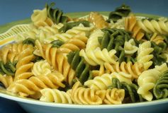 Cooked rotini pasta Royalty Free Stock Images