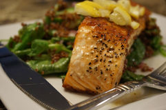 Cooked Salmon Dinner Royalty Free Stock Image