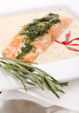 Cooked salmon fillets. With  sauce on white plate Royalty Free Stock Photos