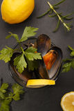Cooked scottish mussels with parsley and lemon in a glass Stock Photo