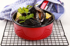 Cooked scottish mussels with parsley and lemon Royalty Free Stock Photography